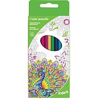 Карандаши цветные двухсторонние (12 шт) KITE 2017 Kite 054-4