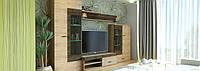 Lion Комплект мебели (3200х530) (полка, тумба под телевизор, шкаф 85, шкаф 95)