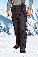 Брюки горнолыжные мужские Freever 6755
