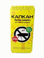 Капкан - липучка для тараканов и муравьев