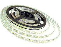 Лента светодиодная 3528-30-20w Luxel (5м)