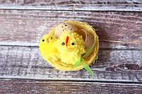 Курочка с цыпленком в гнезде с яйцом