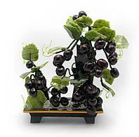 Виноградная лоза (25х18х10 см)