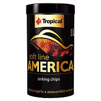 Tropical Soft Line America М чипсы средние для всеядных и плотоядных рыб из Северной и Южной Америки, 100мл