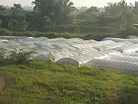 Изготовление теплиц  (каркасов)  под пленку, поликарбонат