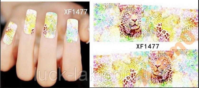 Слайдер-дизайн водные наклейки леопард XF1477