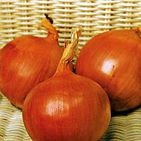 Семена лука Флагман F1, средний 110 - 115дней, 150 - 200грамм, 250 000шт