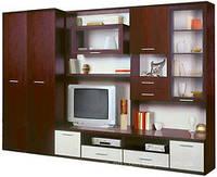 Эго-3  шкаф  3.0х2.03х0.60
