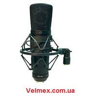 Шнуровой студийный конденсаторный микрофон BIG ESY910 BIG Condenser Mic