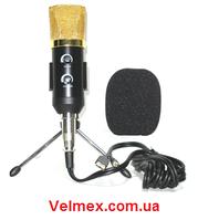 USB студийный конденсаторный микрофон BIG LM1041