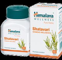 Шатавари, Shatavary (60 таб.) женское здоровье
