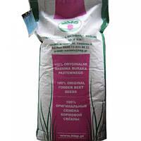 Семена Свекла кормовая Урсус Поли (весовая)