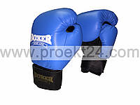 Боксерские перчатки кожа 10 oz (синие)