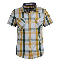 Рубашка в клеточку Glo-story с коротким рукавом; 116, 122 размер