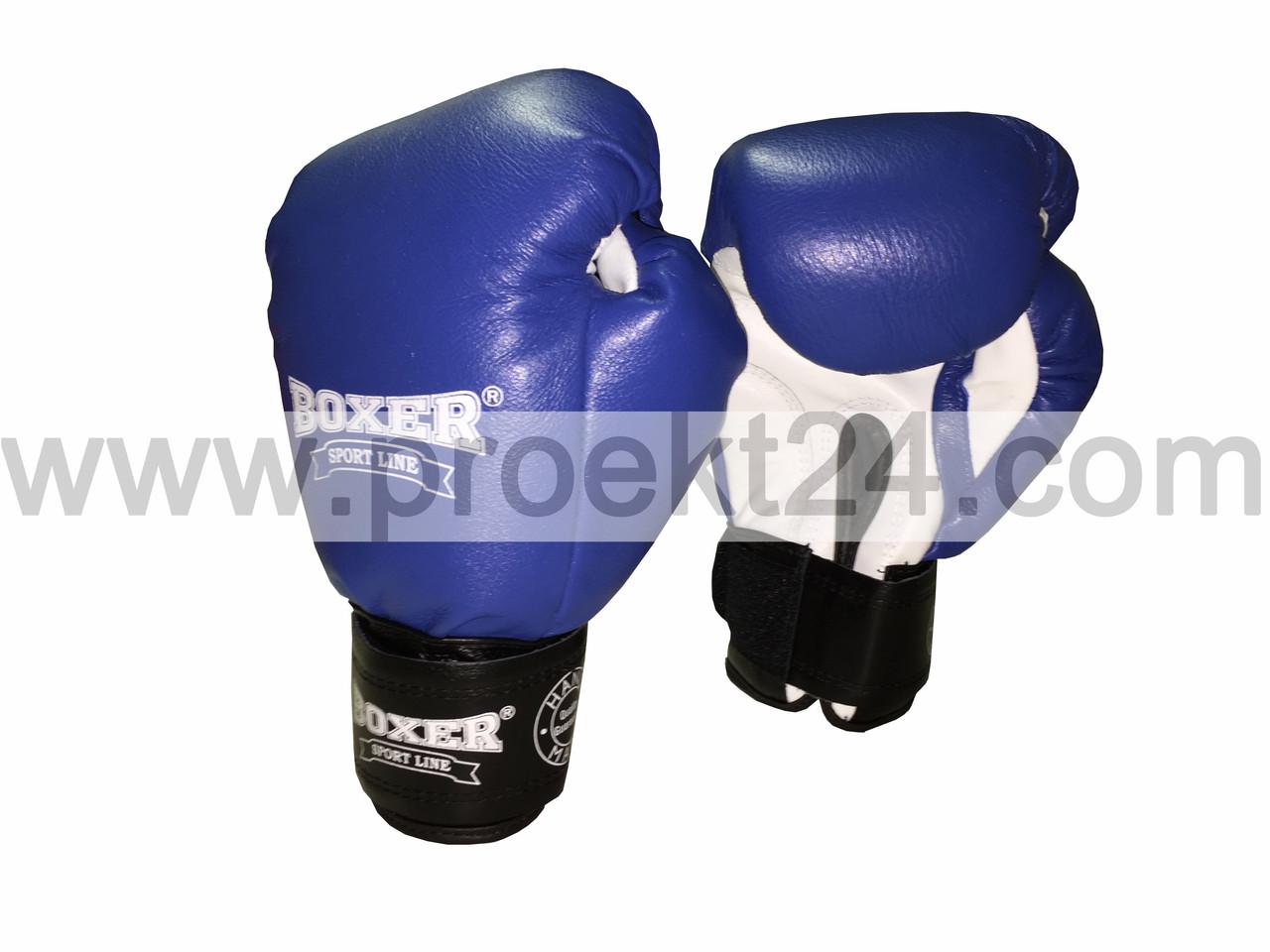 Боксерские перчатки кожа 12 oz (синие)