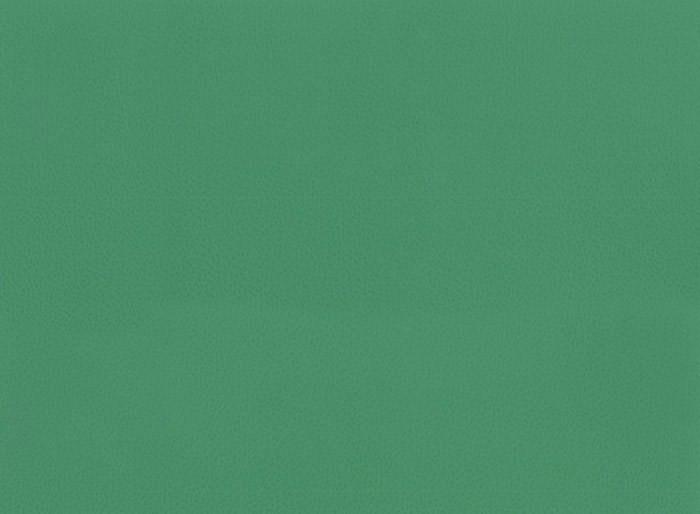 Линолеум спортивный Omnisports V35 FIELD GREEN