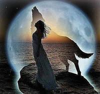 Алмазная мозаика Девушка и волк при луне 30 х 30 см (арт. FR445)