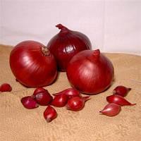 Севок (арпаш) Ред Барон - лук красный, 10 кг
