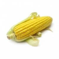 ЕС Кубус - кукуруза, 80 000 семян, EURALIS Украина