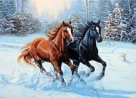 Алмазная вышивка Лошади в снегу 30 х 40 см (арт. FR441)