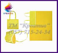 Портплед, Плед-сумка трансформер из флиса с возможностью брендирования (от 50 шт.), фото 1