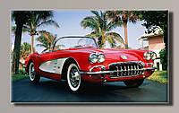 Картина ChevroletCorvette HAS-244 55*32.5