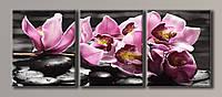 Картина модульная на холсте Орхидеи на камнях 4