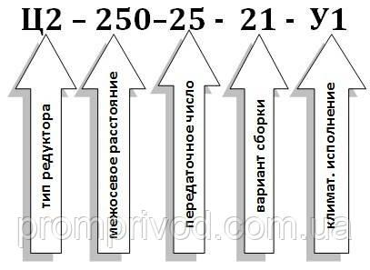 Условное обозначение редуктора Ц2-250