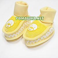 Велюровые пинетки  для новорожденного р. 56-62, демисезонные 95% хлопок 5% эластен ТМ Ромашка 3485 Желтый