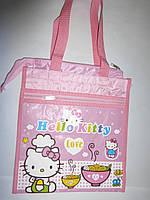 Сумка-портфель А4 детская объемная с 2-мя отделениями
