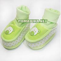 Велюровые пинетки  для новорожденного р. 56-62, демисезонные 95% хлопок 5% эластен ТМ Ромашка 3485 Зеленый А