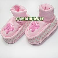 Велюровые пинетки  для новорожденного р. 56-62, демисезонные 95% хлопок 5% эластен ТМ Ромашка 3485 Розовый А
