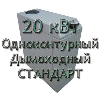 Газовый котел дымоходный одноконтурный Колви Евротерм 20 TS B (CP C) СТАНДАРТ, фото 2