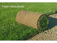 """Укладка рулонного газона """"ПАКЕТ МАКСИМУМ"""""""