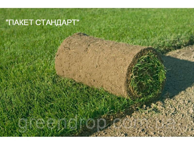 "Укладка рулонного газону ""ПАКЕТ СТАНДАРТ"""