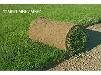 """Укладка рулонного газона """"ПАКЕТ МИНИМУМ"""""""