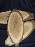 Срез дуб с корой 220-260 мм(товар при заказе от 500грн)