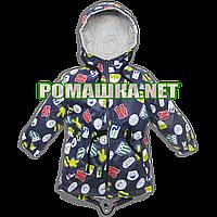 Детская весенняя, осенняя куртка-парка р. 80 с капюшоном подкладка 100% хлопок 3492 Синий