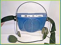 Портативное устройство-громкоговоритель WMP-304 BLUE