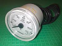 Термометр 0-120 град. капиллярный Ф-40 PAKKENS