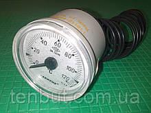 Термометр капиллярный 0-120°C Ø-40 1-метр PAKKENS
