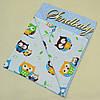 Подушка детская 40х60  Совёнок, фото 3