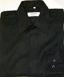 Рубашка CANDA (S/38), фото 2