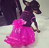"""Платье для собаки """"Рандеву"""". Одежда для собак, кошек, фото 5"""