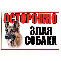 """Информационная табличка наклейка """"Осторожно злая собака"""" с рисунком"""