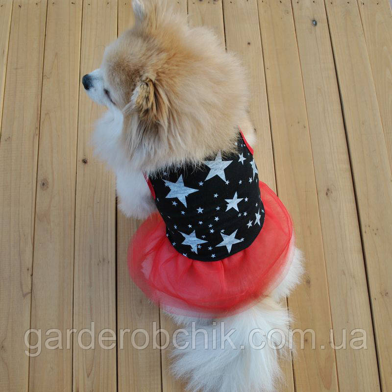 """Платье для собаки, кошки  """"Звезды - 2"""". Одежда для собак"""