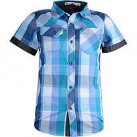 Детская рубашка с коротким рукавом для мальчика Glo-Story:BCS-8151 синий
