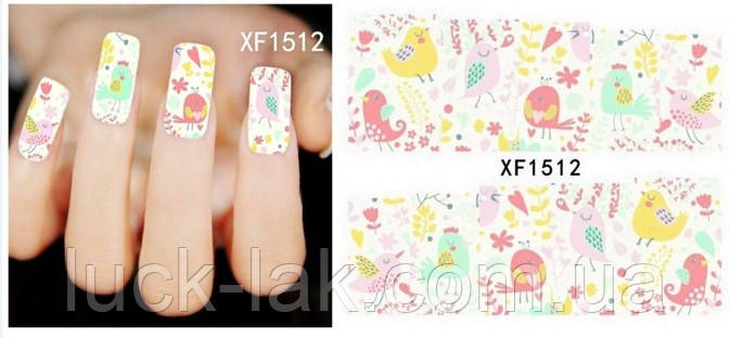 Слайдер дизайн, мальовані птиці XF1512