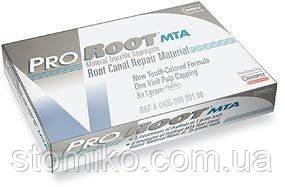 Материал для восстановления стенки корневых каналов  ProRoot MTA