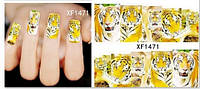 Слайдер дизайн тигр XF1471